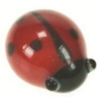 5060 - Glass Ladybirds